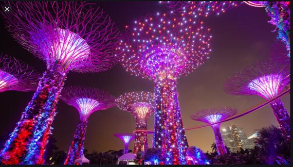 photo singapore gardens