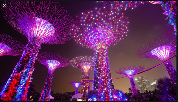 Photo jardin singapour